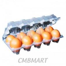 Chicken eggs BIG size pcs